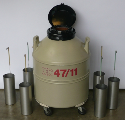 Mve Xc Series Aluminum Cryogenic Sample Storage Dewar